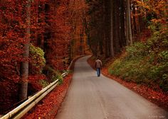 Bavaria in the fall.