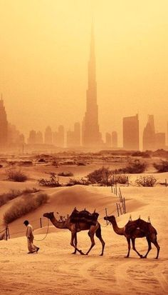 Dubai, UAE - Great mix sunset, desert and sky rise #Architects #Construction #Architecture http://www.arcon.pk/portfolio