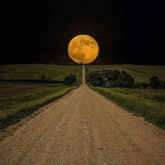 """Down the long dirt road, the moon takes a walk."". Describe what it sees along the way... Imagery and scenery..."