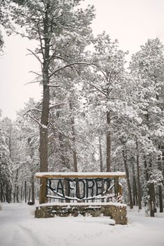 La Foret, Colorado | Bellamint Photography | see more on: http://burnettsboards.com/2014/03/snowy-rustic-perfectly-styled-engagement-shoot/