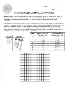 "Blog post from Science Stuff:  ""FREE Graphing and Data Analysis Worksheet"""