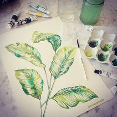 Tropical foliage by @marinabarbato