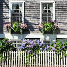 Window boxes done right. Photo by associate market editor @hadleykeller on a recent trip to Nantucket
