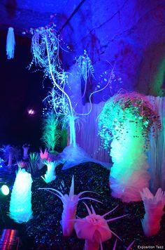 Admirer cet éden extraordinaire… Les Plasticiens d'Oz ont recréé cet univers fantasmatique et féérique…