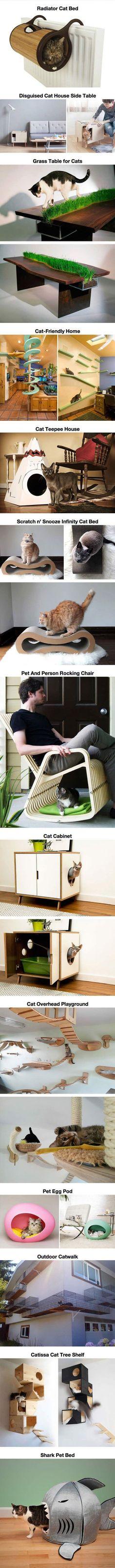 Cat Paradise #CatFurniture