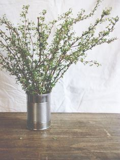 Pretty cuttings in a can.   Image via: A Daily Something.