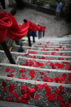 cute idea to decorate ceremony or reception stairs; rose petals and ribbon