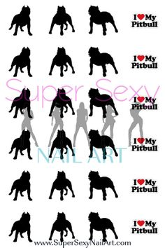Pit Bull Dog Nail Art Water Transfer Decal by SuperSexyNailArt