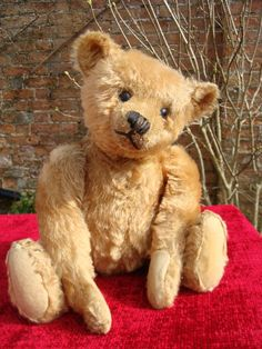 """This is Cotty a 16"""" apricot Steiff Teddy Bear c.1910 with his underscored F Steiff button in his ear. He is a really strong and handsome bear. His pads may have been expertly replaced some years ago. He has a good mohair cover of 95% and boot button eyes. He has a shaved muzzle and some extra stitches to his nose. All his joints work well. He is totally excelsior filled and has a great hump. A solid old boy who is really handsome in his apricot fur. Description Date 1910 Make Steiff Bu..."""