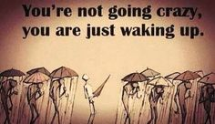 You're not going crazy, you're just waking up.