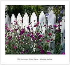 Image Search Results for country home picket fence