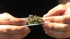 #Uruguay: el gobierno posterga para 2017 la venta de marihuana al público - LA NACION (Argentina): LA NACION (Argentina) Uruguay: el…