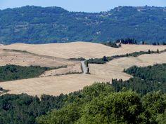 Strade bianche fra San Gimignano e Volterra.