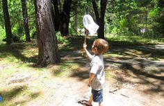 Great ideas for heading out on a bug hunt with your little ones by Go Explore Nature.