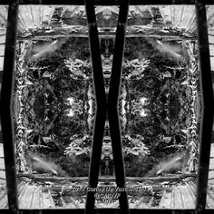 Desde la Ventana. 4/4. Carlos De Vasconcelos. CMDVF. #CarlosDeVasconcelos #CMDVF #Diseño #Ilustración #Arte #Artista #BlancoyNegro #Matas #Ventana / #Design #Illustration #Art #ArtWork #Artist #BlackAndWhite #bw #bnw #Bush #Window Bush, Illustration, Animation, Black And White, Drawings, Artwork, Pictures, Painting, Image
