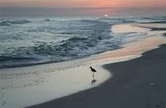 Perdido Beach, FL.  My favorite beach!  Love to camp out overnight here in my tent.  The best way to see the sun set and rise.
