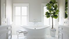 Fiddle leaf fig adds greenery to a classic bathroom. Friday's Favourites: Gallerie B Budget Bathroom, Master Bathroom, Bathroom Ideas, Bath Ideas, Grey Bathrooms, Beautiful Bathrooms, Victoria And Albert Baths, Bath Uk, Interiors Magazine