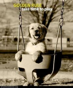 Life is all about play