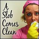 clean checklist, daili checklist, cleaning lists, household, bathroom cleaning, freezer cooking, garage sales, garage sale tips, kitchen cleaning