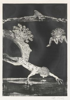 'Narcissus', etching with aquatint - Arthur Merric Bloomfield Boyd Amazing Artwork, Cool Artwork, Arthur Boyd, Australian Painters, Late 20th Century, Paintings I Love, Etchings, Impressionist, Painting & Drawing