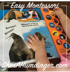 Easy Montessori - learn how to find the best Montessori books without spending a ton of money - ShesAHumdinger.com