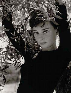 #Audrey Hepburn by Philippe Halsman