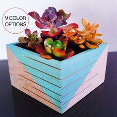 Succulent Planter Indoor & Outdoor by SuzyBDesigns Idea: Kitchen window! Made with reclaimed wood. Rustic and modern. Planter Table, Planters, Hexagon Shelves, Indoor Outdoor, Succulents, New Homes, Rustic, Holiday Decor, Cabinets