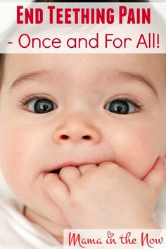 End Teething Pain - Once and For All! Baby Teething RemediesTeething ...