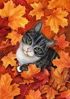 Keijumökki kaupan    kissapostikortit