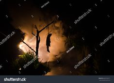 Horror view of hanged girl on tree at evening (at night) Suicide decoration. Death punishment executions or suicide abstract idea. Different background decoration