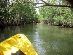 North Miami - Kayaking in Oleta River State Park