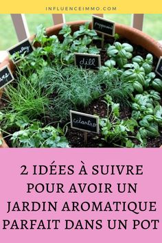 2 idées à suivre pour avoir un jardin aromatique parfait dans un pot These herbs not only enjoy each other's company, but also feed by exchanging important nutrients and, therefore, ensuring that your harvest is bountiful! Herb Garden, Vegetable Garden, Garden Tools, Parfait, Fall Vegetables, Garden Seating, Flowers Perennials, Autumn Garden, Permaculture
