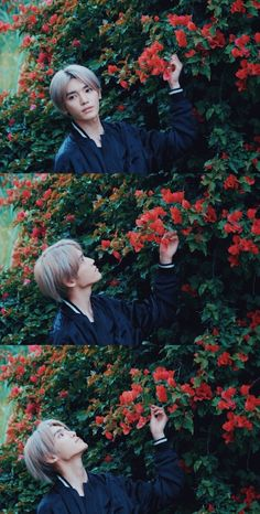 flowers boy truly the most beautiful human being ever❤️ K Pop, Nct Taeyong, Jeno Nct, Winwin, Nct 127, Johnny Seo, Collage, Kpop Aesthetic, Nct Dream