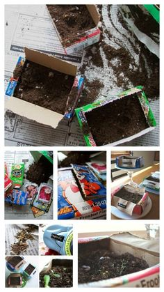 Seed Starters DIY: This blogger made little planters to fill with dirt and seeds. You can also add Dymo label plant markers if you like. Eco friendly idea