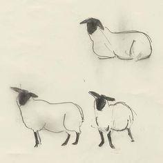 Animal Drawings Drawing and Illusion: 2015 - Year of the Sheep Sheep Paintings, Animal Paintings, Animal Drawings, Art Drawings, Watercolor Painting Techniques, Painting & Drawing, Drawing Drawing, Sheep Drawing, Lamb Drawing