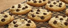 Sweet but Sugarless Chocolate Chip Cookies. Who can resist a chocolate chip cookie? You won't even need to try with this recipe using SugarLeaf™! Click image for the full recipe. Sugar Free Chocolate Chip Cookie Recipe, Ghirardelli Chocolate Chip Cookies, Sugar Free Cookies, Chocolate Chip Recipes, Sugar Free Desserts, Sugar Free Recipes, Baking Cookies, Sugarless Cookies, Cookies Soft