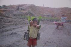Child labor caught on film at palm oil plantation in Indonesian Borneo