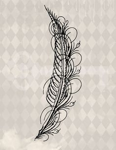 Calligraphy Feather graphic digital download by TanglesGraphics, $1.00