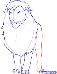 how to draw a lion step 11