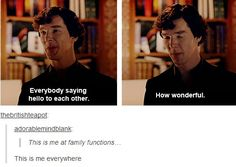 YES, yes, yes! Seriously, there are plenty of fictional characters I sympathize with, and just as many I can identify with. But I have never run across a character that I understood on such a fundamental level as Sherlock. Our actions may play out differently, but our thought processes are identical.