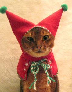 wool embroidered Meowy Christmas Holiday Elf Hood by CatAtelier, $85.00
