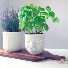 Kiss moodcup som planteholder. En skøn alt mulig kop #Mood #cup from #Livink