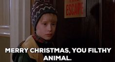New party member! Tags: merry christmas christmas movies macaulay culkin home alone 2 home alone 2 lost in new york merry christmas you filthy animal