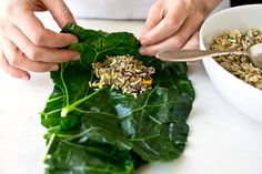 "Stuffed Collard Greens. Delicious! Never mind the rice, use diced mushrooms and nuts or cauliflower ""rice"" instead."