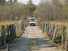 Puente en Moremi, Okavango