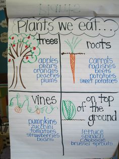 Full PLANTS Unit plan for K-1. Two week Science unit, with ELA and Math connections.