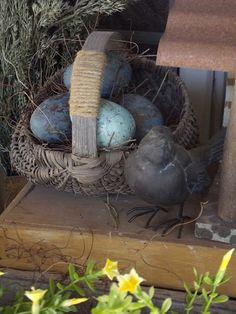 """Sweet little bird guarding her """"eggs"""""""