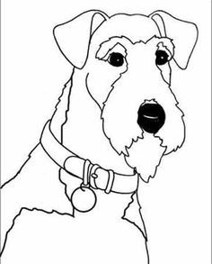 irish terrier coloring pages - photo#20