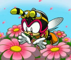 Charmy bee and his adorableness