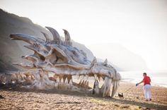 Dragon skull on beach. Discovery writing.